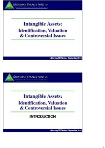Icon of CLE-Slides Valuing Intangible Assets