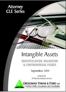 Icon of CLE-Book Valuing Intangible Assets